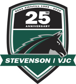 Anniversary teams logo