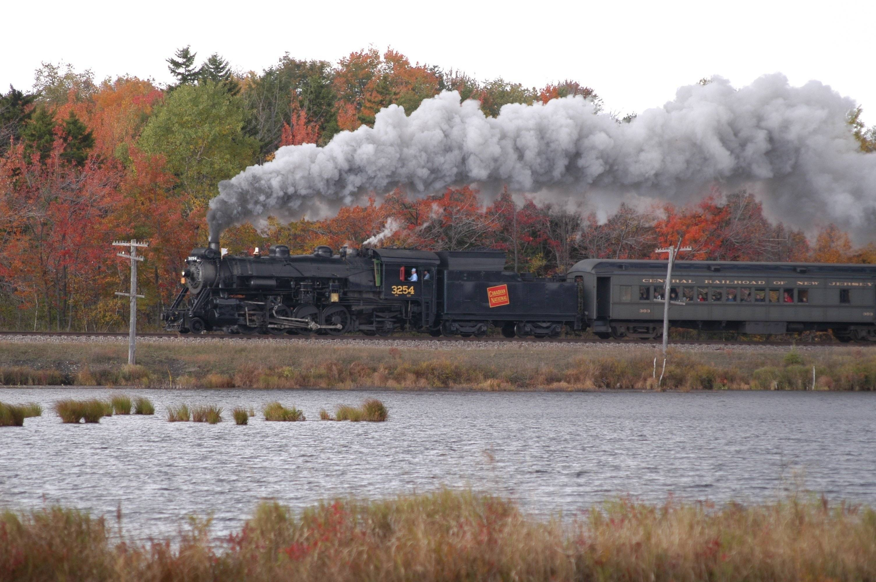 Photo of steam engine pulling several cars on a local excursion.  Fall foliage is in the background and lots of smoke coming out of the locomotive's stack.