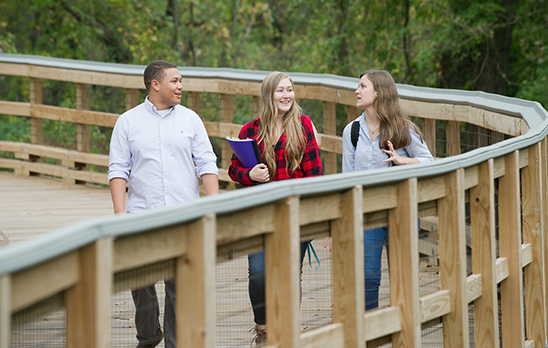 Students walking across the Dell Pathway Bridge