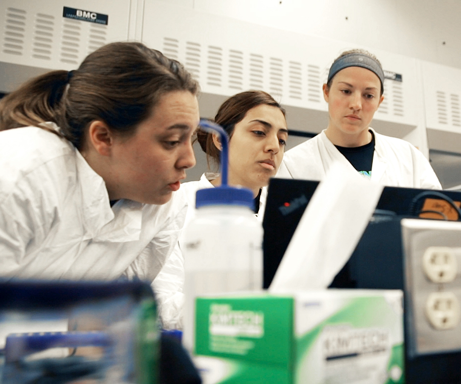 Biochemistry students researching cancer-fighting drugs