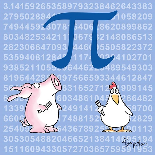 animals with pi