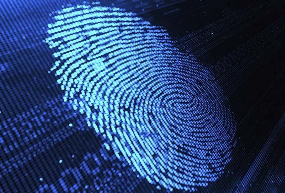 digital fingerprint evidence